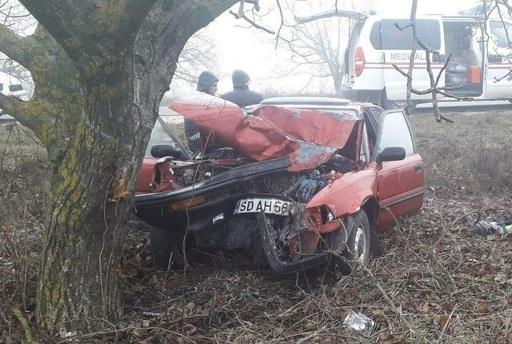 Смертельное ДТП в Резине: водитель уснул за рулём, машина врезалась в дерево