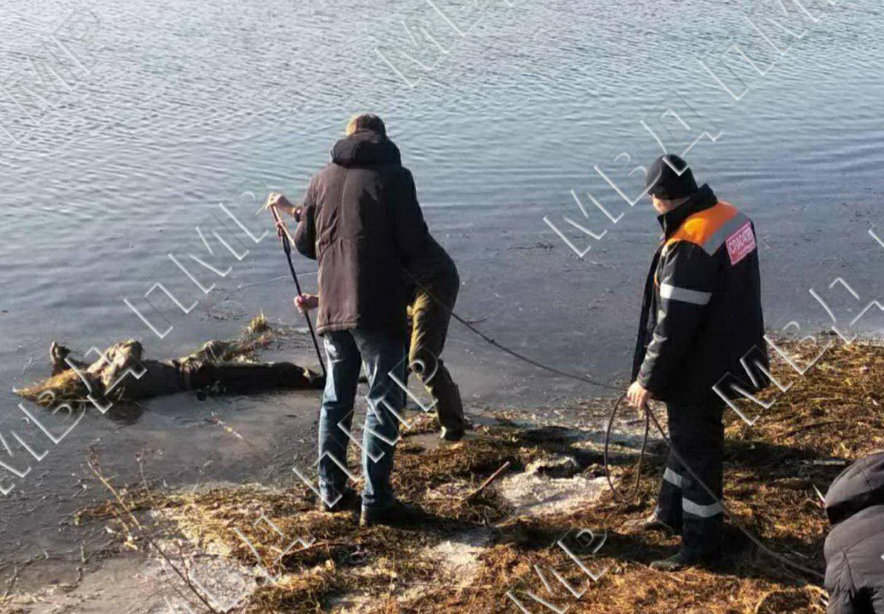 Пропавшего без вести в Приднестровье мужчину нашли мертвым