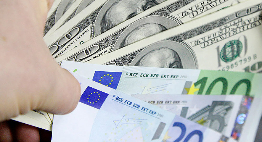 Euro and dollar will rise in price