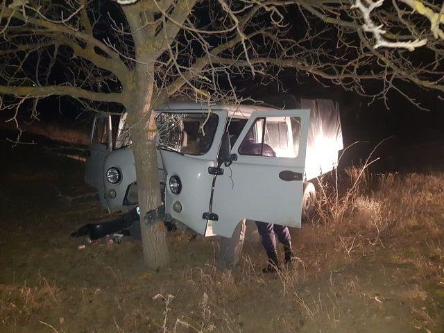 В Каушанах водитель протаранил дерево и сбежал с места ДТП (ФОТО)