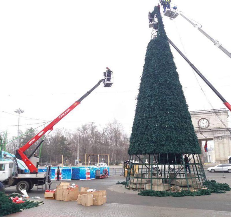 Праздник окончен: на ПВНС разобрали новогоднюю ёлку (ФОТО)