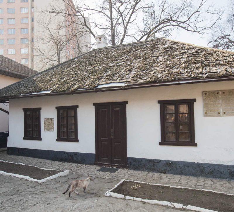 Президент заверил: Дом-музей Пушкина будет отремонтирован! (ФОТО)