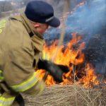 Более 60 очагов возгорания растительности потушили пожарные за сутки