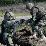 Около 8000 боеприпасов уничтожили в прошлом году в Молдове