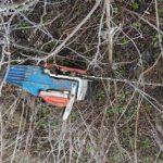 """В Леова """"чёрные лесорубы"""" вырубили лес почти на 5 тысяч леев (ФОТО, ВИДЕО)"""