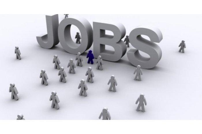Более 9 тысяч вакантных рабочих мест насчитывается в Молдове