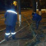 Чебан: Муниципальные службы работают над устранением последствий сильного ветра (ФОТО)