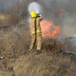 Пожарные тушили загоревшуюся сухую траву в Каушанах (ФОТО)