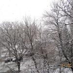 Север Молдовы заметает снегом: зима дала о себе знать в конце февраля (ВИДЕО)