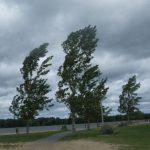 Ураганный ветер оставил без электроэнергии жителей более 100 населённых пунктов