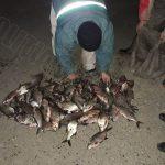 Пограничники задержали любителей незаконной рыбалки (ФОТО)