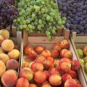Молдова впервые заработала $200 млн на экспорте фруктов в Россию