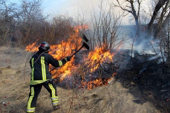 Более полусотни возгораний сухой растительности потушили пожарные за последние сутки (ФОТО)