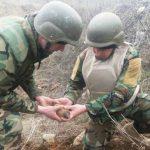 В Каушанах сапёры нашли и обезвредили крупную партию боеприпасов