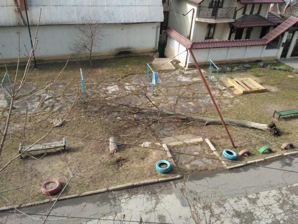 Поваленные деревья, сорванные крыши и провода: чем обернулся разгул стихии для столицы (ФОТО, ВИДЕО)