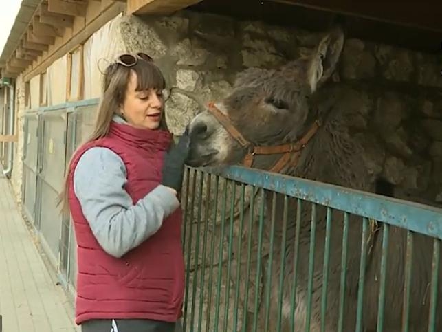 Животные тоже на карантине: столичный зоопарк и контактный в Бардаре закрыты из-за коронавируса (ВИДЕО)