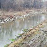 В Вулканештах в реке обнаружили труп мужчины