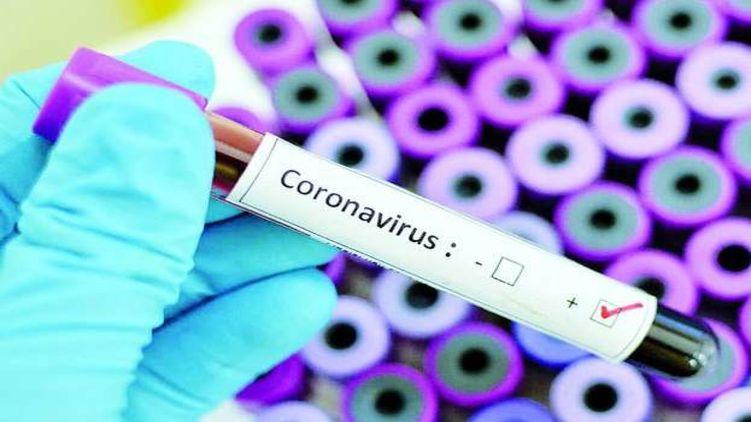 Подтверждено 295 новых случаев коронавируса