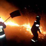 В Молдове ликвидировано более 60 возгораний сухой растительности (ФОТО, ВИДЕО)