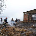 35 овец погибли при пожаре в селе Томай