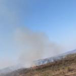 На окраине Кишинёва горит сухая трава (ВИДЕО)