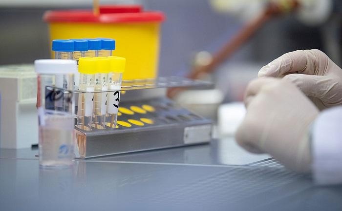 Подтверждено 345 новых случаев коронавируса