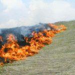 """Новый """"желтый код"""": в Молдове сохраняется высокая пожарная опасность"""