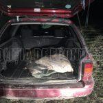 25 килограммов незаконно выловленной рыбы изъяли на границе у двух браконьеров (ФОТО, ВИДЕО)