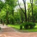 С понедельника разрешено гулять в парках, но группами не больше трех человек