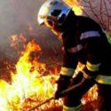 75 возгораний сухой растительности потушили в Молдове за сутки (ФОТО)