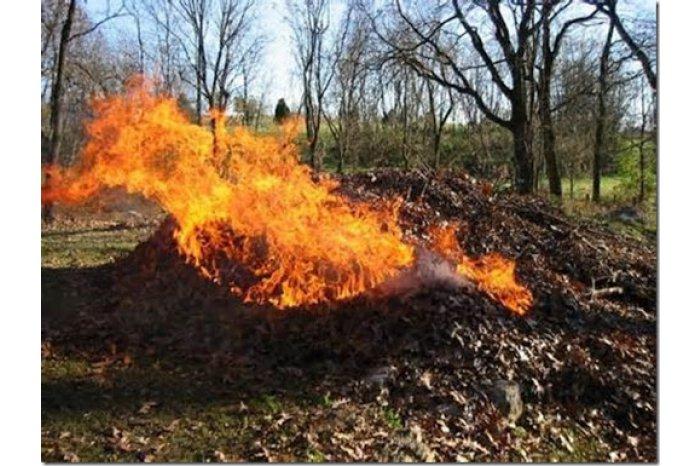 Штрафы за сжигание бытового мусора и листьев могут составить до 9 000 леев