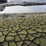 """""""Жёлтый код"""" в связи с гидрологической засухой продлён ещё на 10 дней"""