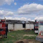 120 цыплят сгорели во время пожара на птицеферме в Теленештах (ФОТО)