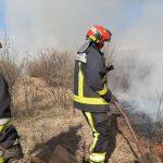Десятки возгораний сухой растительности потушено пожарными за сутки (ФОТО, ВИДЕО)