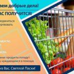 Примария Кишинёва запустила благотворительную пасхальную акцию в поддержку нуждающихся