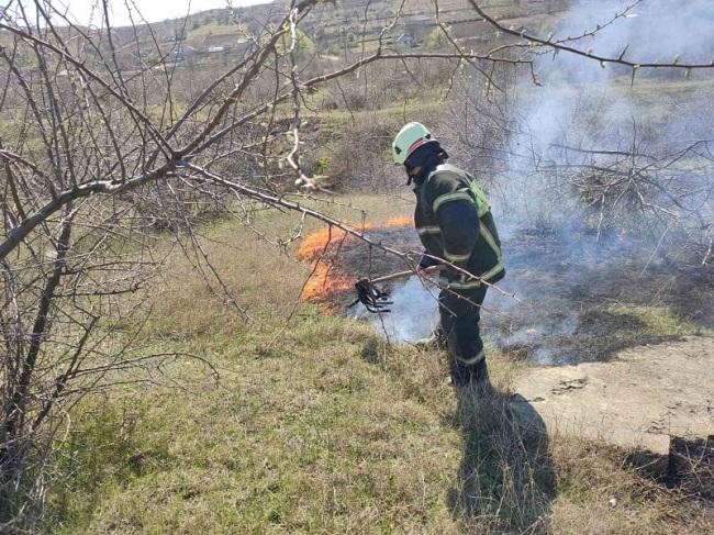 Более 30 возгораний сухой растительности потушили пожарные за сутки (ФОТО)