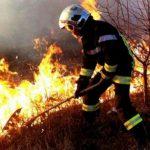 За сутки пожарные ликвидировали 60 очагов возгорания сухой растительности (ВИДЕО)