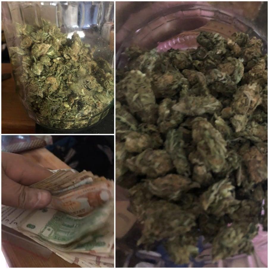 Выращивал марихуану на продажу: столичные полицейские задержали наркоторговца (ВИДЕО)