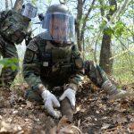 34 снаряда обнаружили и уничтожили сапёры в селе Бэлцаць (ФОТО, ВИДЕО)