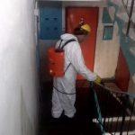 В столице проводят дезинсекцию подвалов многоквартирных домов (ФОТО)