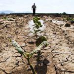 """""""Жёлтый код"""" в связи с гидрологической засухой продлён до 17 апреля"""