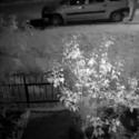 В столице хулиганы разбили стекло чужого авто: владелец поймал вандалов (ВИДЕО)