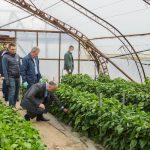 Додон: Поддержка аграрного сектора – один из приоритетов руководства страны (ФОТО, ВИДЕО)