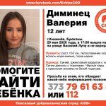 В Кишиневе без вести пропала девочка (ОБНОВЛЕНО)