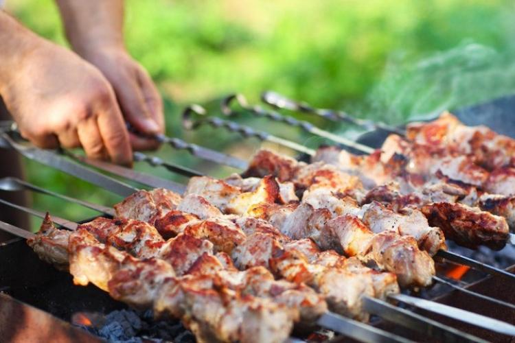 Шашлыки и пикники в общественных местах запрещены до 30 июня