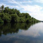 Уровень воды в верховье реки Прут повысится