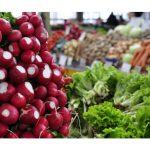 За свежими овощами и фруктами: во всех секторах столицы откроются ярмарки
