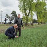 Президент: Будем прилагать максимальные усилия для поддержки сельского хозяйства (ФОТО, ВИДЕО)