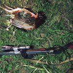 Охотившихся на фазанов браконьеров задержали в Хынчештском районе