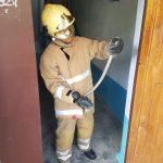 Инцидент в Каушанах: в жилой дом заползла змея